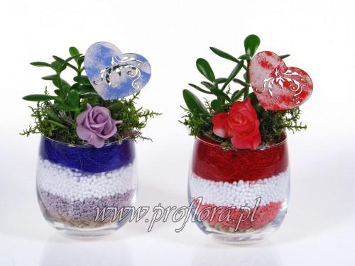 buncolek mały sucul Walent dekoracja kwiatowa - produkcja Proflora