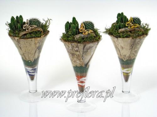 kielich toruń (szampan średni) katus kamienny kompozycje kwiatowe Proflora