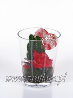 kompozycje kwiatowe donia kakt Walent - produkcja Proflora