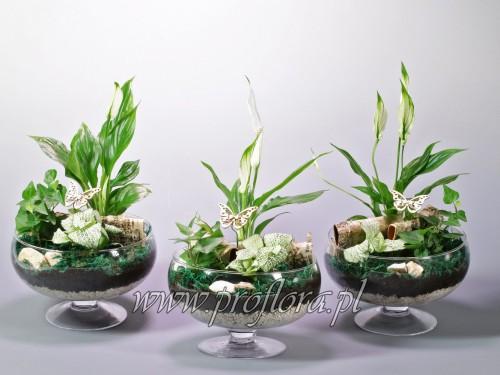 misa na stopce ECo dekoracja kwiatowa Proflora